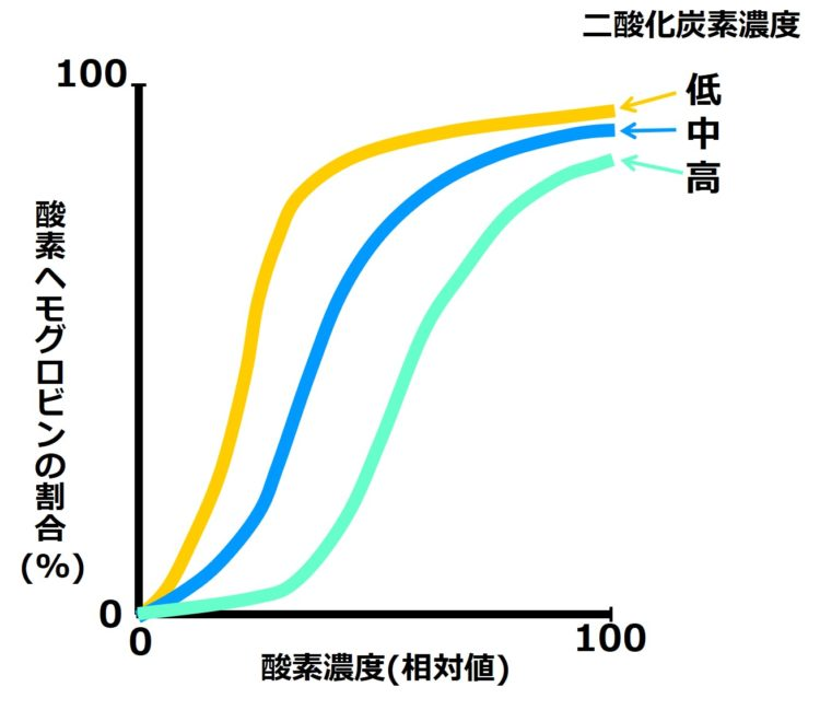 二酸化炭素濃度が高い、中程度、低い場合の、3本のグラフが描かれている。濃度が高いグラフほど、右下に描かれている。