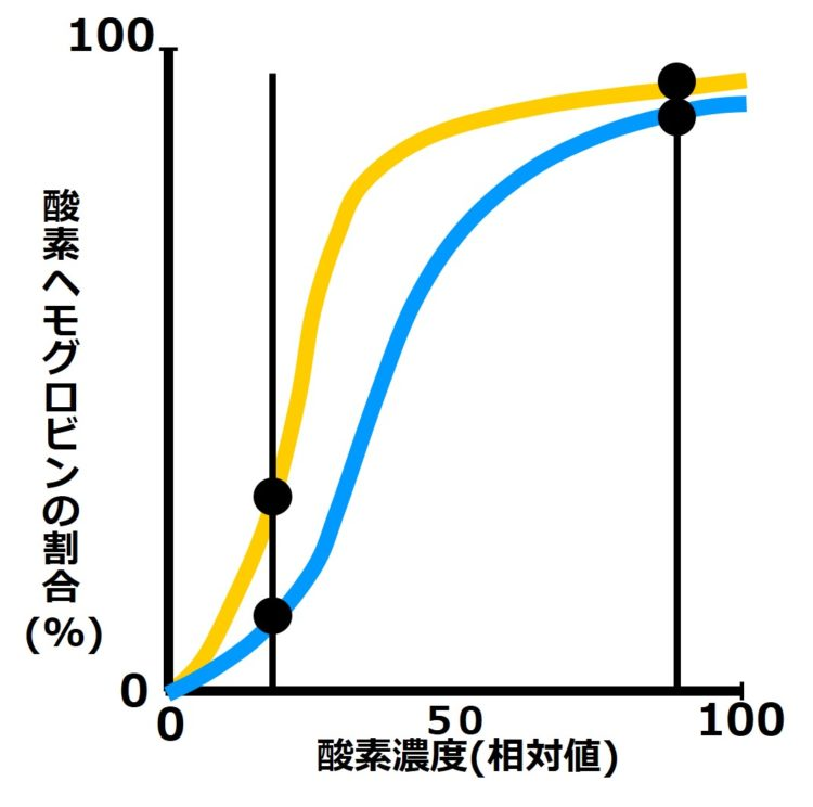 他の酸素濃度で縦軸と平行なラインを引いた図
