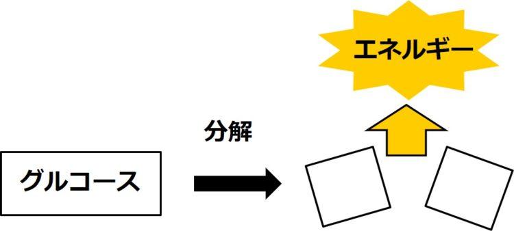 グルコース1つを長方形で表現し、それが2つの正方形に分解する模式図。分解の際に、エネルギーが出てくる。