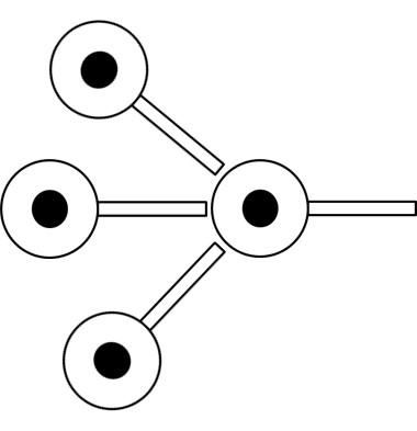1つのニューロンに対して3つのニューロンがつながる図