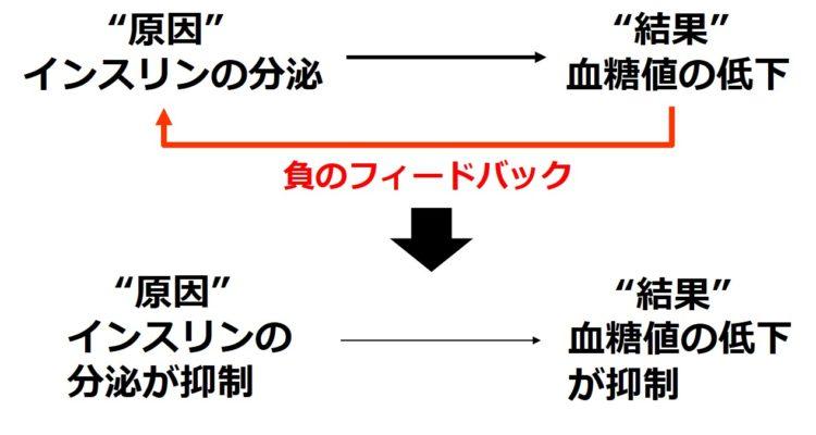 負のフィードバックの例:インスリン分泌