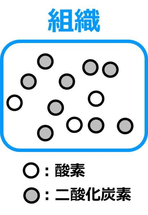組織内に、酸素の丸が3個、二酸化炭素の丸が9個描かれた図。