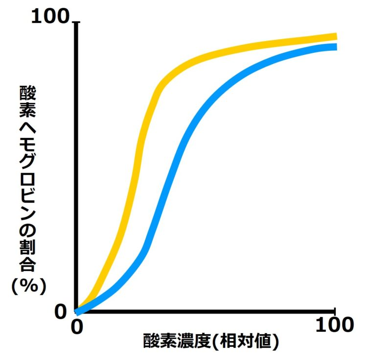 酸素解離曲が2本描かれた図