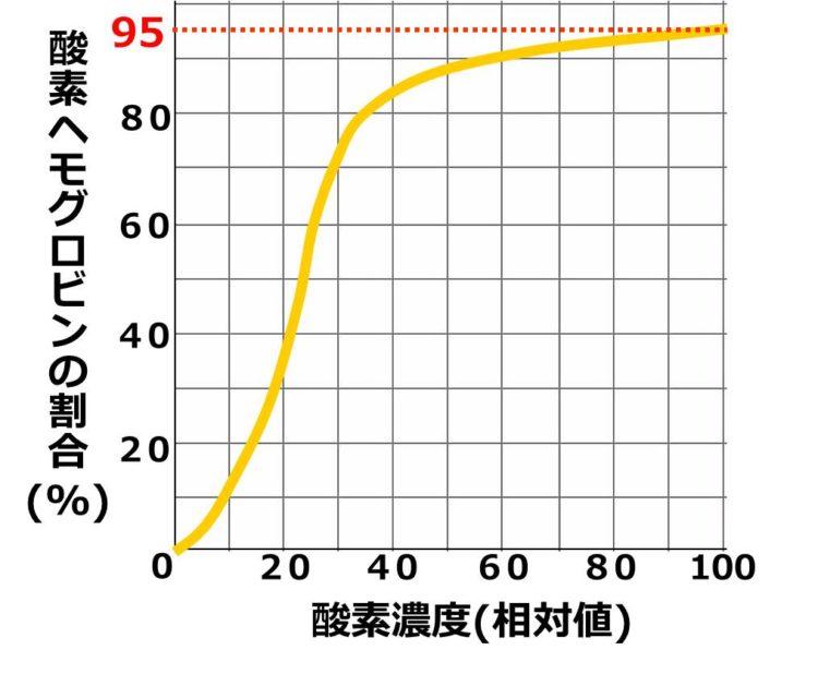 酸素濃度100の時の縦軸の値は、95であることを描いた図