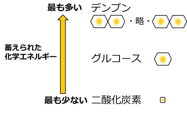 二酸化炭素の正方形の中に、黄色の小さな丸。グルコースの六角形の中に黄色の大きな丸。デンプンの多数の六角形それぞれの中に大きな黄色の丸。