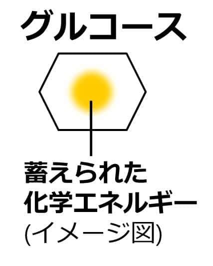 グルコースを六角形で表現下図。六角形の中に、化学エネルギーのイメージ図として、黄色い円が描かれている。