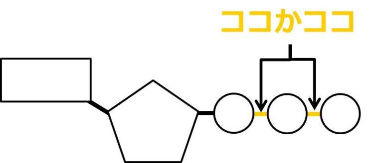 くし団子のように3つのリン酸がつながっている。五角形から最も遠いリン酸を1番目とする。1番目と2番目、2番目と3番目の間の結合のいずれかが切れる。
