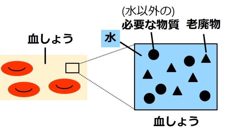 血しょうの一部を拡大して、水色の正方形で描いてある。正方形の水色は水を示す。この正方形の中に、水以外の体に必要な物質が丸で5つ描かれ、老廃物が三角で5つ描かれている。