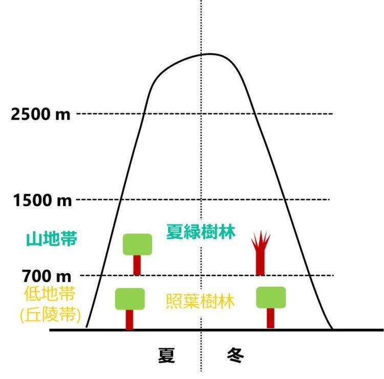 夏緑樹林の位置を示す図