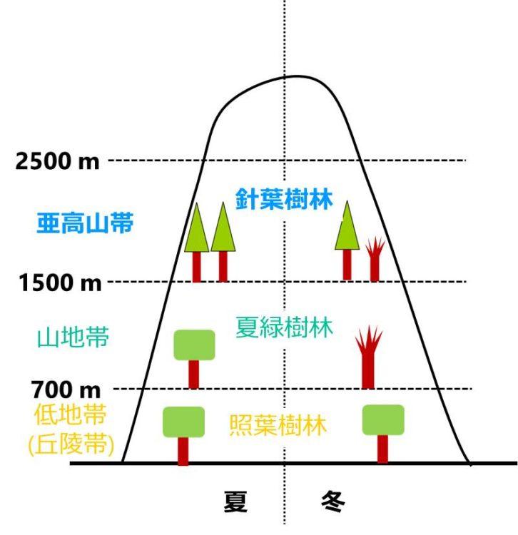 針葉樹林の垂直分布を示す図