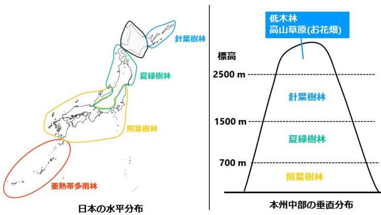 水平分布と垂直分布を示す図