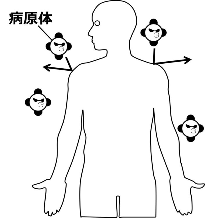 病原体が、皮膚によって跳ね返されているように描かれた図