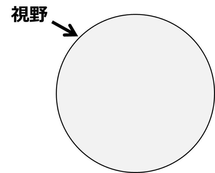 視野の中には、観察したい部位が無いことを描いた図。