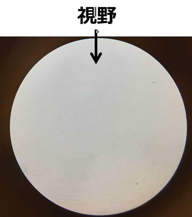 丸く白い視野の写真