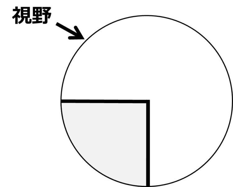 観察したい部位が視野の中央にあることを描いた図