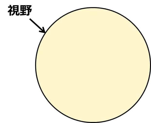 視野の円内に黒点がない