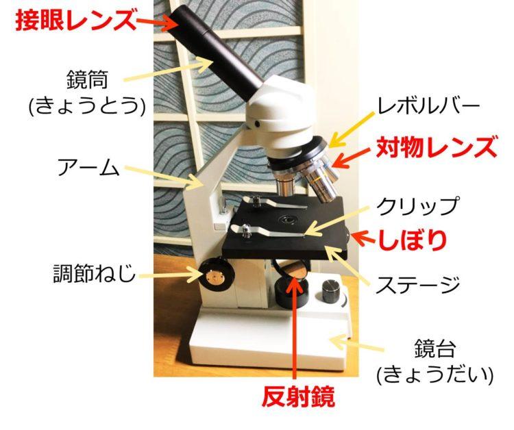 光学顕微鏡の写真に、各部の名称が書かれている。