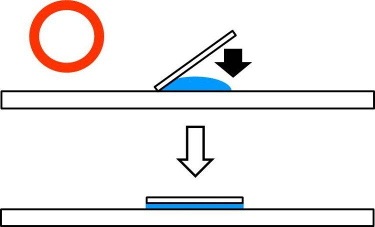 カバーガラスの浮いていた右端を、スライドガラス上に下してく図