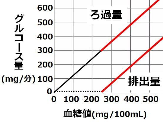 血糖値250以上では、ろ過量と排出量のグラフが平行になることを描いた図