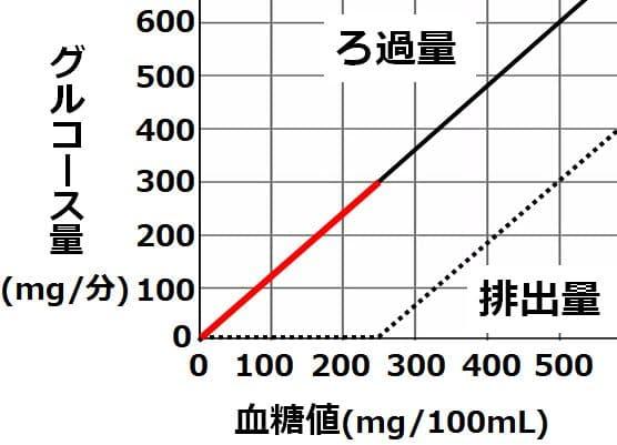 血糖値250までは、ろ過量のグラフと重なる
