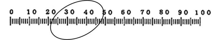 楕円形の観察物と接眼ミクロメータの目盛りが重なってはいるが、目盛に対し、楕円の横長部分(測定したい部位)が斜めに位置している。