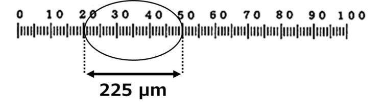 楕円の横長部分が225μmであることが描いてある。