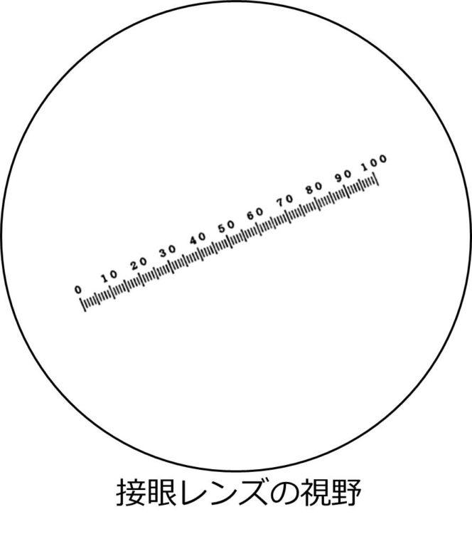 接眼レンズの視野が描かれ、中央に接眼ミクロメータの目盛があるが、斜めに傾いている。