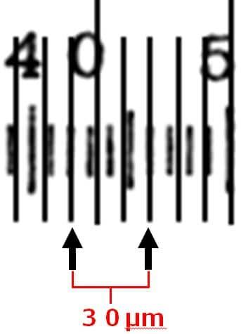 2か所間(矢印と矢印の間)が30μmであることを描いてある。