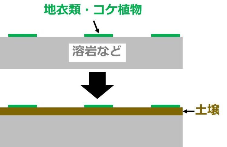 土壌が形成され始める図。岩石として描かれた図の表面に、薄い土壌が蓄積している。