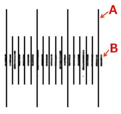 長い目盛には記号A、短い目盛に記号Bがふってある。