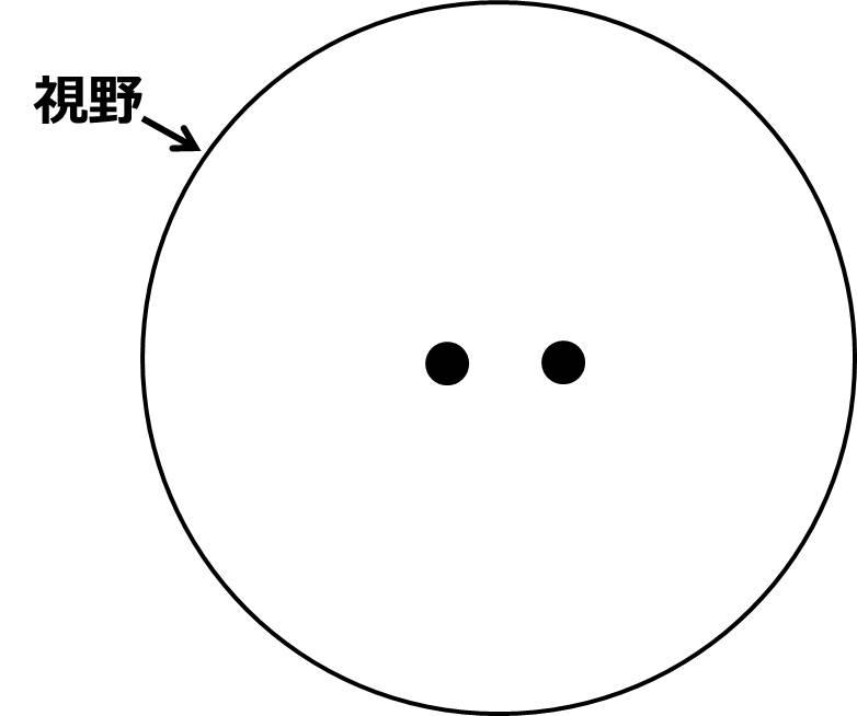 視野内に黒丸が、少し距離をとって2つ描いてある。