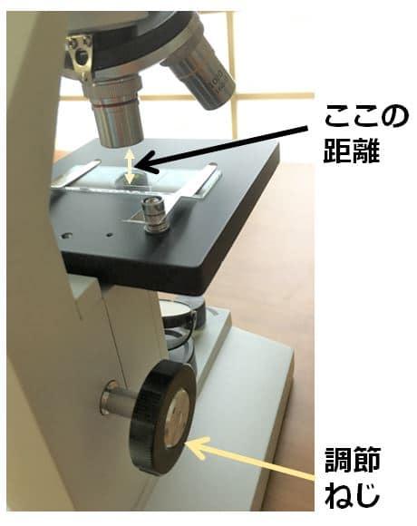 対物レンズとプレパラートの位置関係が映っている写真。